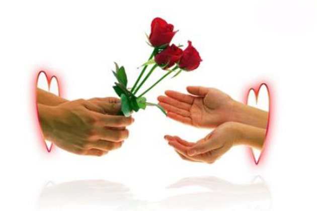 valentine-day-rose-wallpapers-pics7