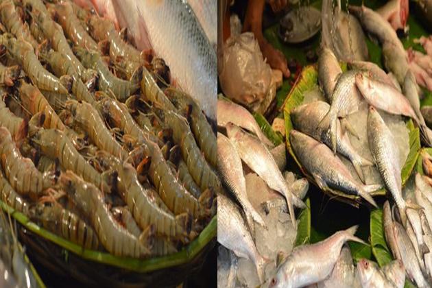 hisha and prawn