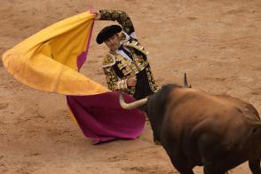 স্পেনের ঐতিহ্যবাহী 'বুল ফাইটিং' উৎসবে জখম দুই