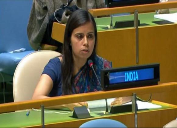 পাকিস্তান হল 'টেররিস্তান', কাশ্মীর নিয়ে পাকিস্তানের খোঁচায় জবাব ভারতের