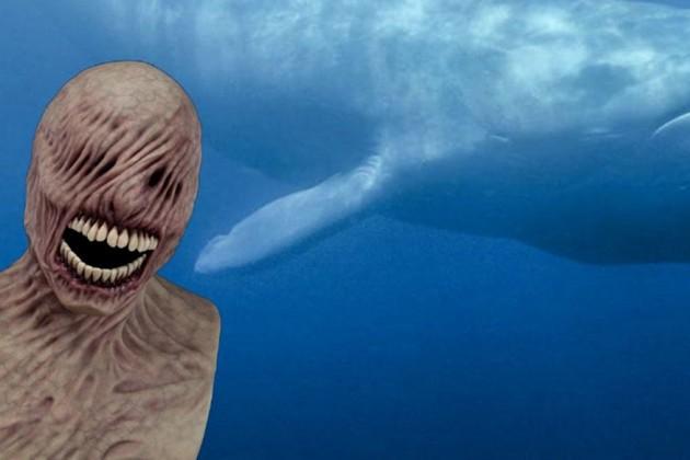 রাজ্যে ছড়াচ্ছে 'Blue Whale' মারণ গেমের আতঙ্ক !