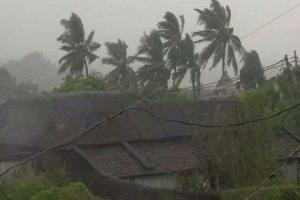 দুপুরের মধ্যে আছড়ে পড়বে 'ফেতাই', বুধবার থেকেই শহরে জাঁকিয়ে শীত